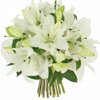 Bouquet of flowers - Bouquet of white lilies