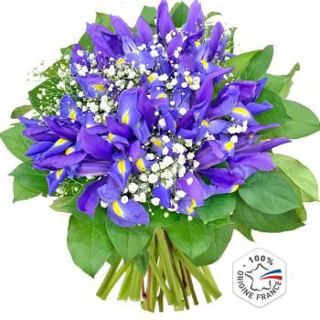 Bouquet de fleurs - Bouquet d'Iris Van Gogh