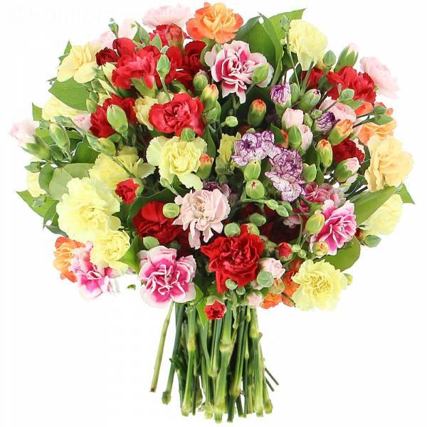 Bouquet d'Oeillets Multicolors
