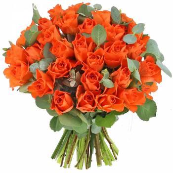 Bouquet de roses - Roses Andalouses