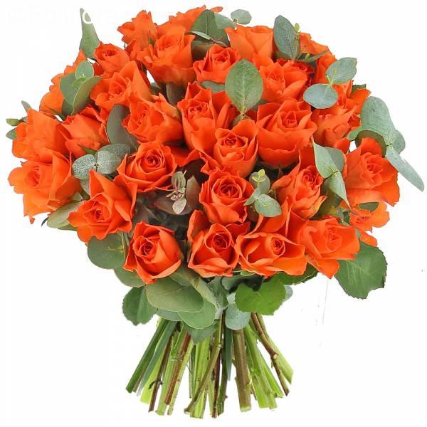 Roses Andalouses