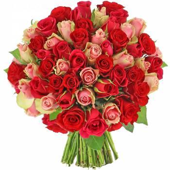 Bouquet de roses - Roses Audace