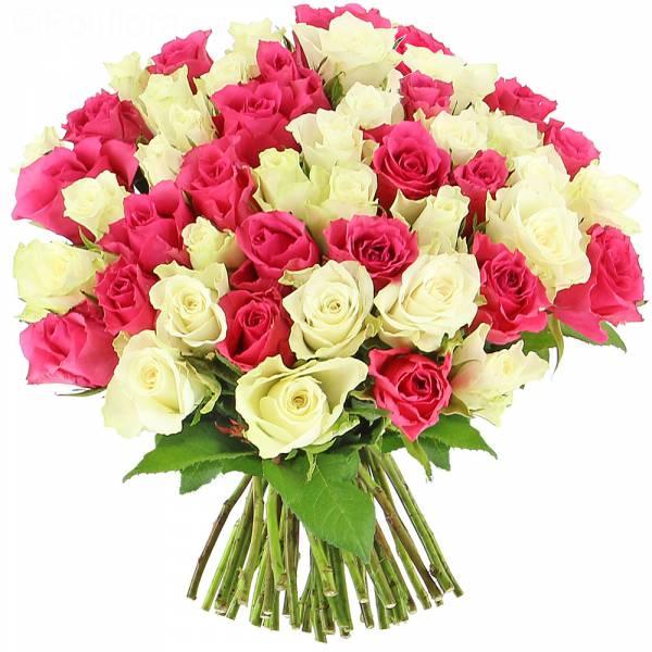 Roses Bonheur