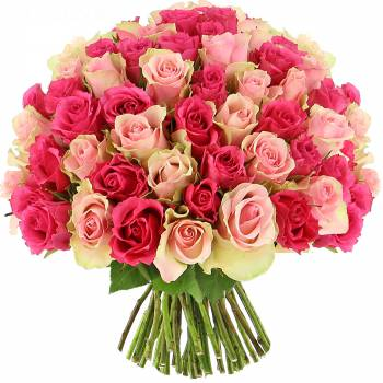 Livraison express : Roses Sweety - 25 Roses