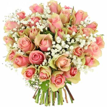 Bouquet of roses - Roses Caresses