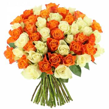 Livraison en moins de 24h : Roses Tonic - 25 Roses