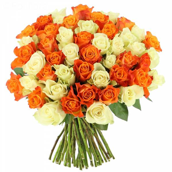 Tonic Roses