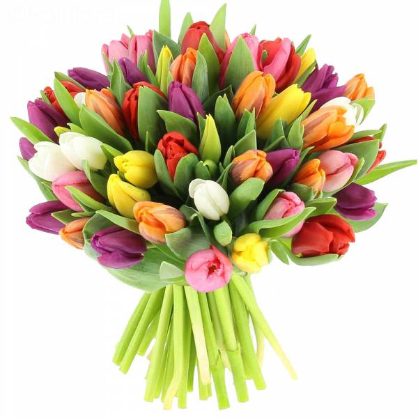 Bouquet de Tulipes Multicolores