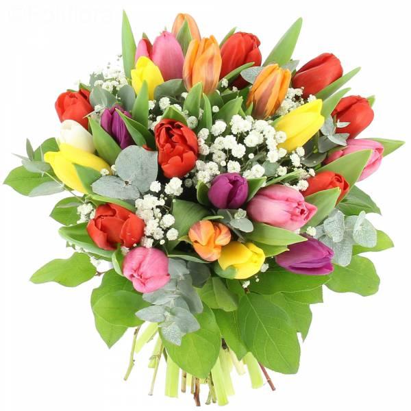 Tulipes et Gypsophile