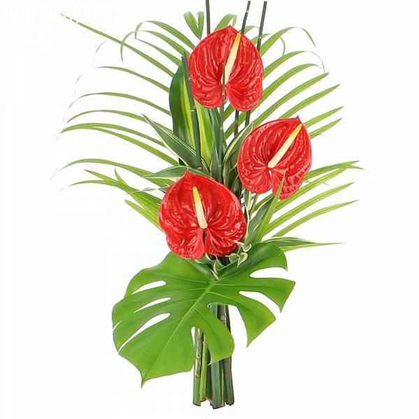 Bouquet Zen Passion