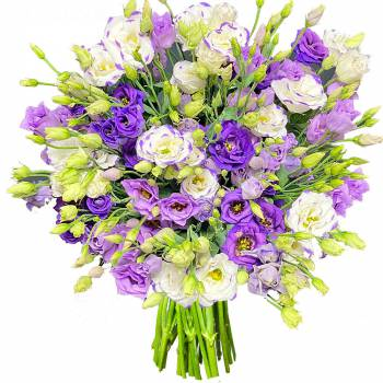Bouquet of flowers - Lisianthus Turbulence of Blues