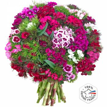 Bouquet of flowers - Poet Carnations