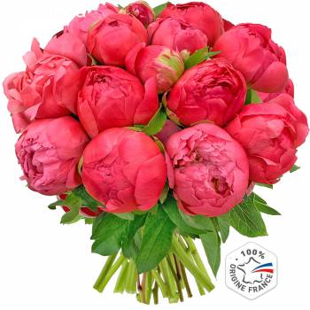 Bouquet of flowers - Peonies Coral Charm