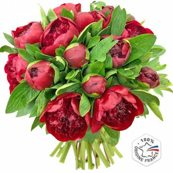 Bouquet of flowers - Red Charm Peonies