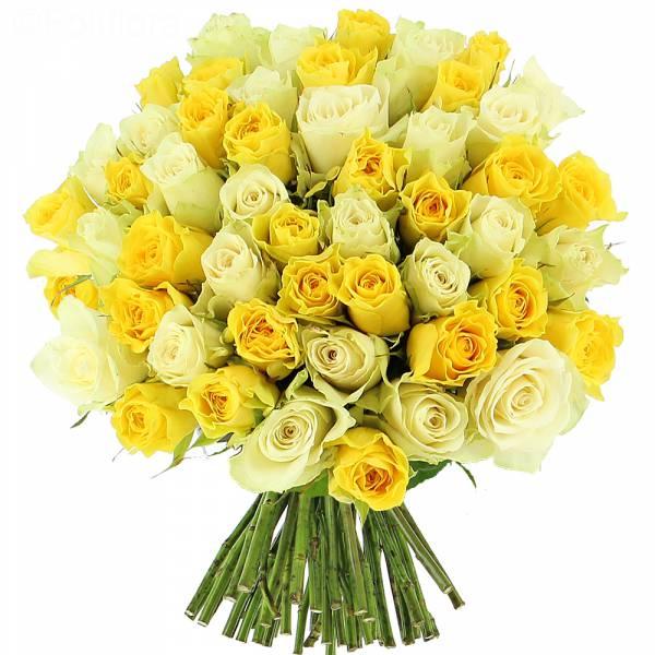 Roses Citronnées