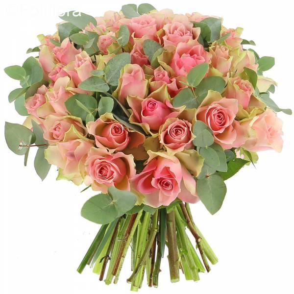 Roses Désir