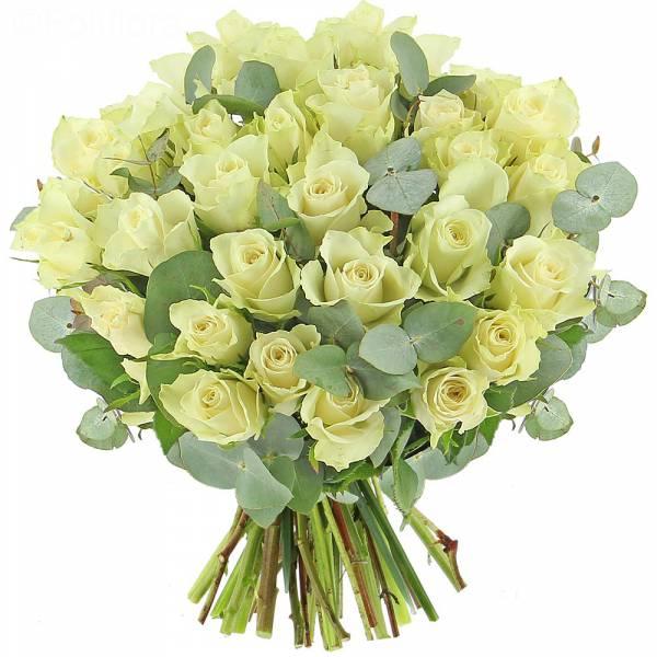 Roses Perles